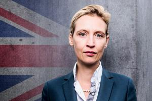 pm weidel brexit.news