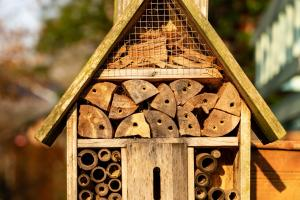 insect hotel 4110513 1920.news