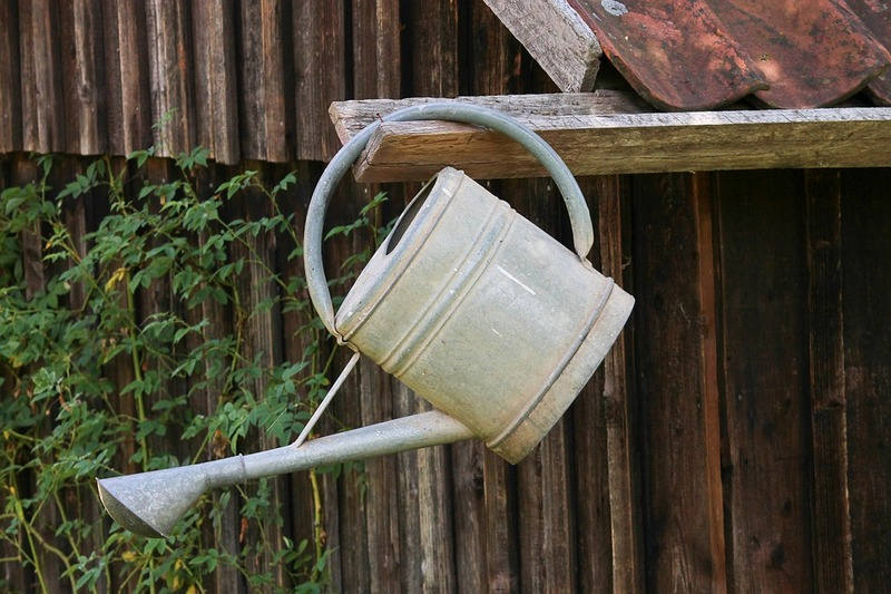 watering can 3603799 960 720