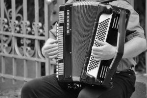 accordion 378256 1280.news