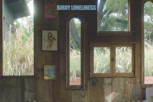 Birdy   Lonelyness.news