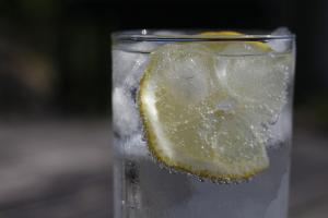 Lemon Gin 11.news
