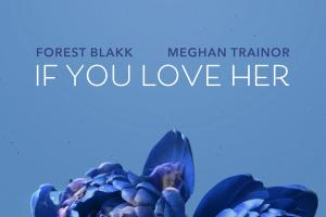 Forest Blakk   If You Love Her feat Meghan Trainor.news