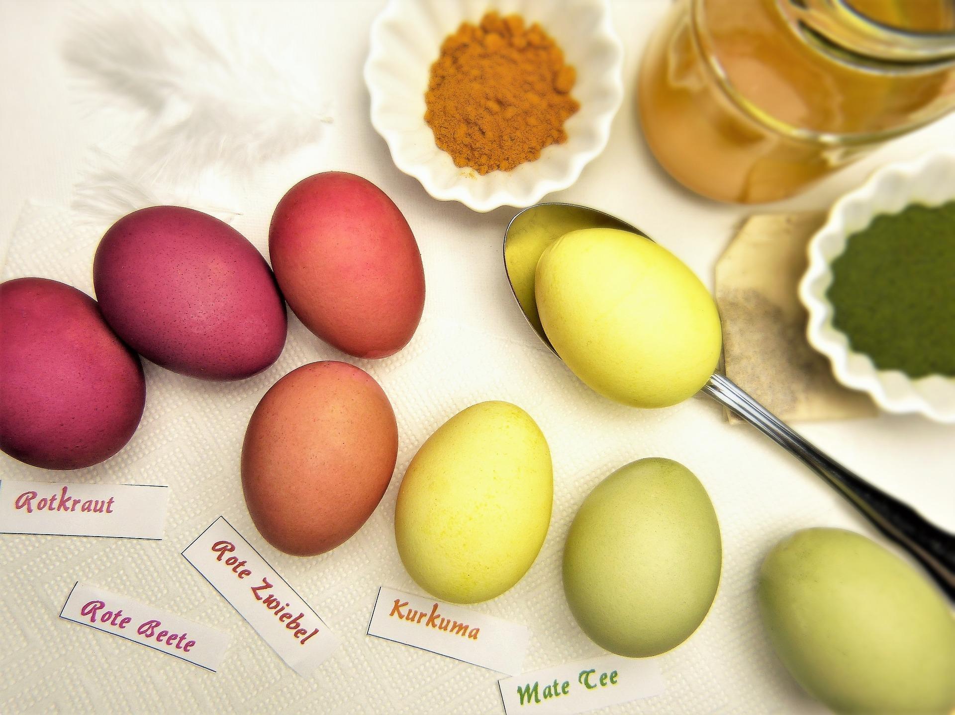 Magdeburger News | Eier färben mit natürlichen Farben